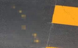 塗りたての横断歩道に侵入者… → ネット『これはこれでアリ!』『残して欲しい』