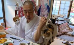 【猫まみれ】住職の朝ごはんが極楽すぎる!
