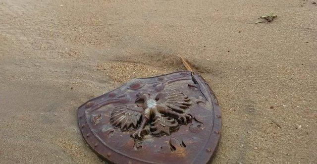 近所の海岸を散策していたら、勇者の盾っぽいのが漂着していた…