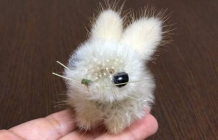 【癒し】タンポポの綿毛で作ったウサギが可愛すぎる!「まるで生きているみたい」