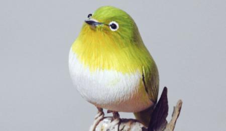 【話題】父が木で作った野鳥、凄すぎる!出来栄えに感動!