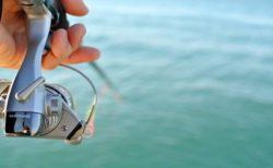 『凄いレアかも…』貯水池で釣りしてたら◯◯◯が釣れた!!