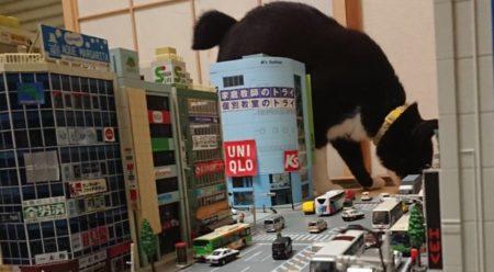 【巨大猫襲来】もっふもふの体で街を薙ぎ払う! 人類はどうなってしまうのか!