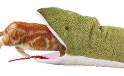【閲覧注意】猫がヘビに食べられてしまい安らかに眠る・・・大丈夫なのこれ?