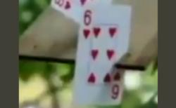 【神業】トランプを極めた少年の動画が話題『カードも武器になる…』『これもうヒソカじゃん』