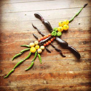 【ナスカの地上絵】全てナス科の野菜で作った「ナス科の地上絵」が最高すぎる!