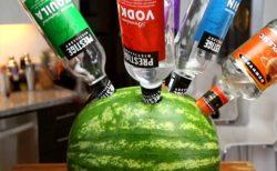 【笑撃】アルコールスイカを知ってるか? めっちゃくちゃ旨いらしいぞ!