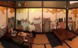【極楽】京都に猫猫寺ってあるのご存知ですか? 猫の住職に会えるらしい!