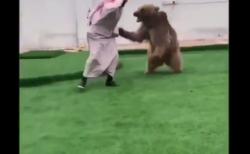 """【ヒグマ】熊と人間の """"鬼ごっこ"""" が恐ろしすぎる!ペットなのかな・・・?"""