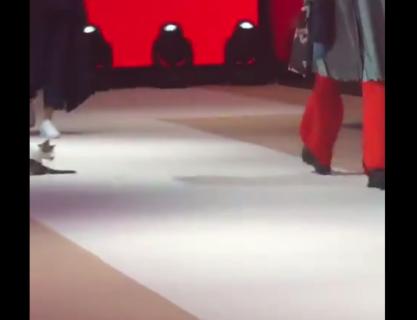【ショー】我がもの顔で「ランウェイ」を歩く猫が可愛い。気分は主役ですかね!