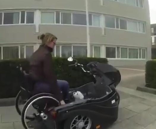 【トライク】車椅子と犬がそのまま乗れる「バイク」が凄い。これは便利!