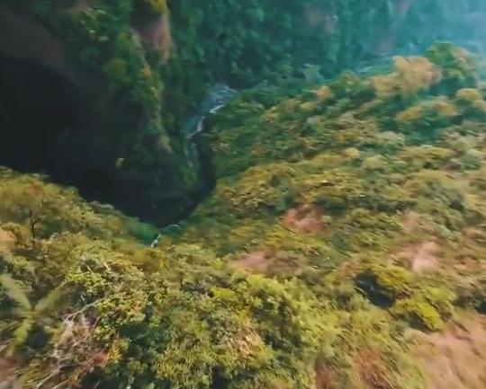 """【動画】鳥の """"視点"""" で撮った映像の迫力がやばい。空を自由に飛びたいな!"""