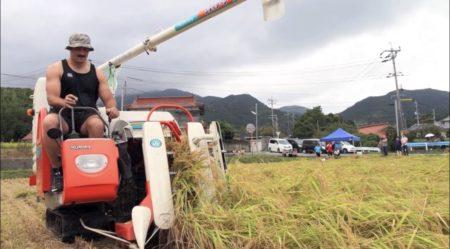 【ムッキムキ】ラグビーカナダ代表、日本で稲刈り体験
