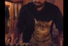 """【最高】主人が演奏する """"ピアノ"""" にうっとりな猫ちゃんが可愛すぎる!"""