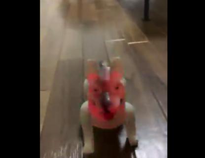 """【恐怖】インドみやげの """"犬のおもちゃ"""" が完全にホラーな件!"""