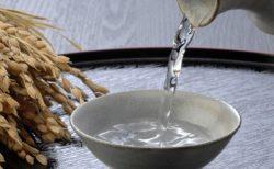 【スキンケア】皮膚科の女医さん激推し☆江戸時代から続く老舗酒蔵が本気で作った「日本酒の化粧水」コスパ最高☆モチすべ肌に