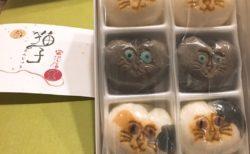 【必見!】猫の饅頭の水木しげる感が凄い笑
