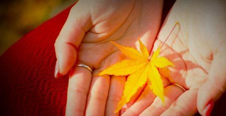 【8大フリーネイル】紅葉にぴったり、コゼットジョリの季節ネイルが素敵すぎて話題