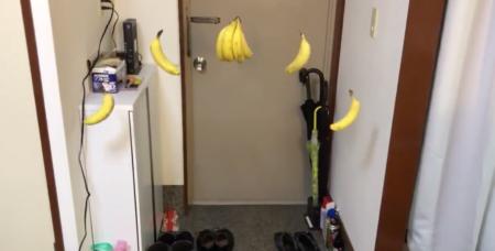 """【再現】バナナを玄関に """"吊るしてみたら"""" ドンキーコングのステージになった!"""