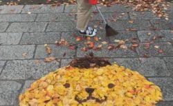 【凄い】落ち葉で「ポムポムプリン」を作ってみました。クオリティが高すぎる!