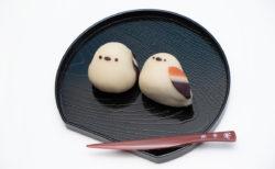 【可愛い】シマエナガの和菓子をご覧ください
