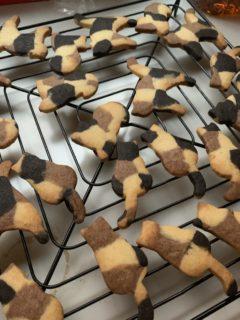 【お菓子】手作り「三毛猫ちゃんクッキー」が美味しそう。天才かな?