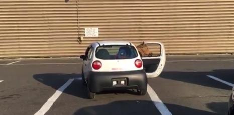 【力づく】駐車が苦手な方に「おすすめ」の方法がこちら!