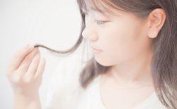 【ヘアケア】英国女王賞を2回受賞、世界中で爆売れのヘアブラシ「タングルティーザー」濡れ髪用が話題に