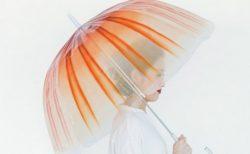 【1600円】クラゲ展示世界一の加茂水族館がアパレルブランドとコラボ!「くらげの傘」が可愛すぎる