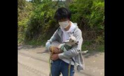 """歩きたくないけど """"抱っこもされたくない"""" ヤギの赤ちゃんが可愛すぎる!"""
