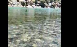 インドの「ガンジス川」stayhomeの影響でめちゃくちゃ綺麗になってる!