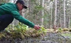 まさか日本にも「底なし沼」が存在するなんて。落ちるな危険!