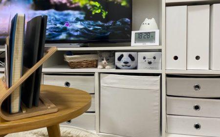 棚に置いてある「鼻セレブ」に擬態する猫。完成度が高い!