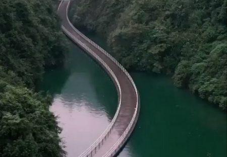 【すごい】水面に浮く橋?!車が通ると広がる波紋が綺麗