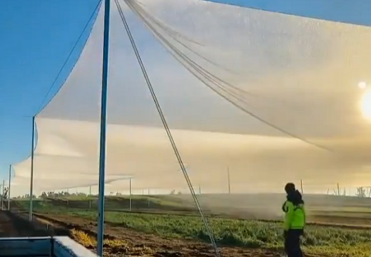 【驚愕】ネットに石を投げるとついた朝露が一気に落ち、広い畑の水やりが完了!壮大なシステムが話題