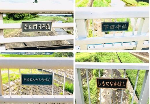 【深い】橋の名称プレートが話題「入口(日本橋に近いほう)は漢字、出口はひらがな」