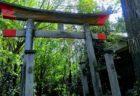 【鳥肌】何十年も使われてない神社で夏祭りを体験してきた子供達の話が話題に