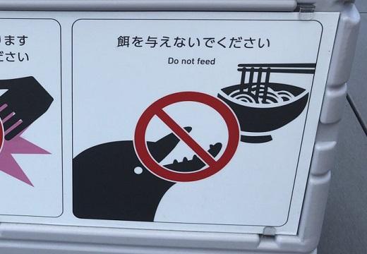 【うどんw】四国水族館の「餌を与えないでください」がどこかおかしいw