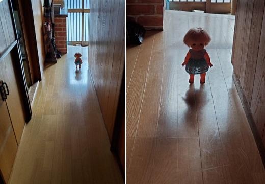 【チャッキー!?】絶妙な位置に置かれた人形、怖すぎると話題にw