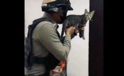 【ねこw】武器を構えたタイの警察官!よそ見してる手元の子が話題に