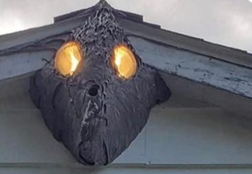 【怖!】屋外の照明を覆うようにできたハチの巣、強烈な外観にw