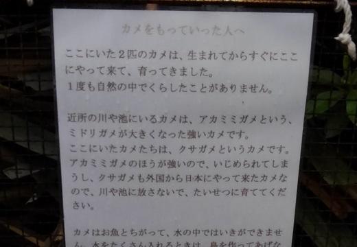 【誘拐】「カメをもっていった人へ」営業所の池に貼られたメッセージが悲しすぎる