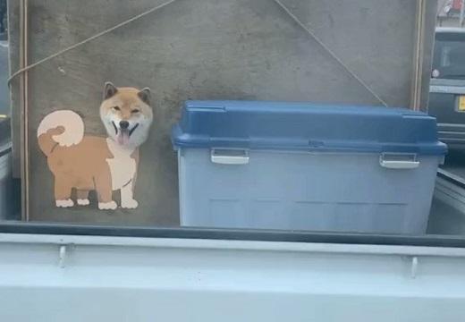 【最高w】前を走る軽トラ、ゴソゴソ動く場所に注目すると犬の顔が・・・