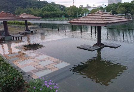 【ヴェネツィア感】満潮時に半分くらい水没する徳島の公園が話題「正直エモくて好き」