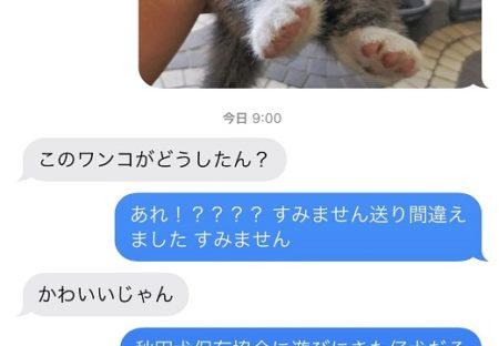 【w】「間違えて上司に子犬画像を送ってしまったー!」→上司さんの反応が話題に