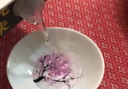 【1300年の歴史 美濃焼】岐阜の職人さんが作る「酒を注ぐと桜が咲く盃」が素敵すぎる