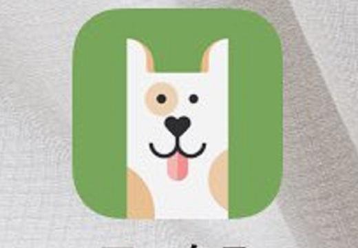 【カワイイ】薬を飲み忘れると犬が電話をかけてくれる、便利アプリが話題