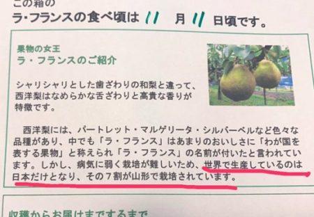 【w】栽培が難しいラフランス、作ってるのは日本だけ。ラフランスって呼んでるのも日本だけ