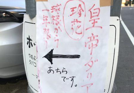 【←あちらです】電柱の貼り紙、半信半疑で辿っていくと・・素敵な光景にびっくり