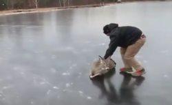 【泣いた】凍った湖で困った鹿と助けるおじさん、素敵すぎる動画が話題に